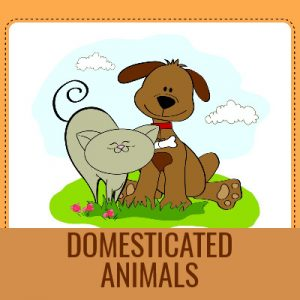 Dougpuzzlecom-1980s-DOMESTICATED-ANIMALS-Word-Search